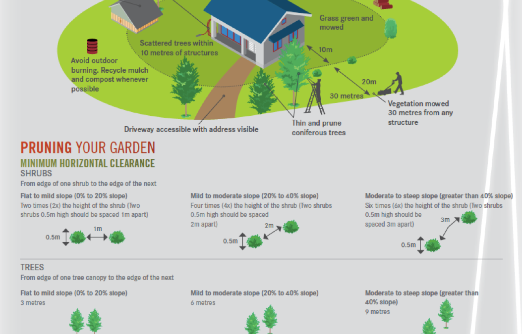 FireWise landscaping: Create a Defendable Zone