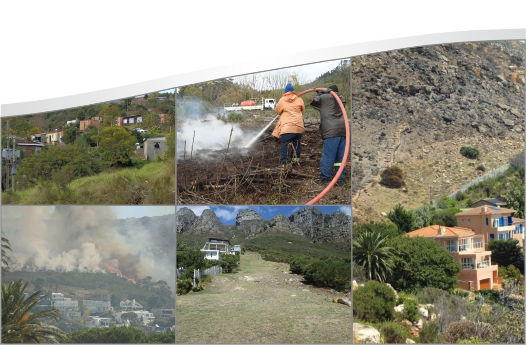Fuel management measures in the Wildland-Urban Interface