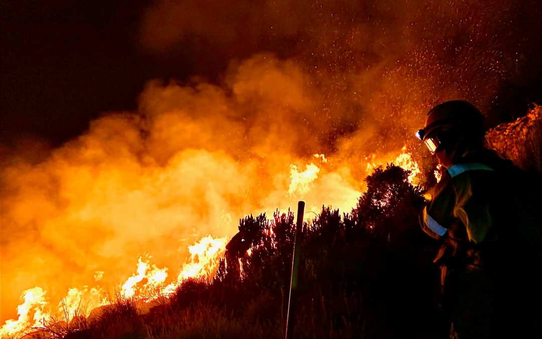 Governing Wildfire – A Global Inquiry